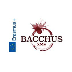 Bacchus SME-Organisational Diagnosis and B-Learning Tool for Enhancement of the Wine Tourism SME